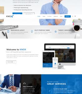Business Modern website Theme