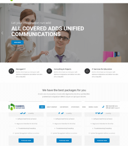 Profesional IT Services Website