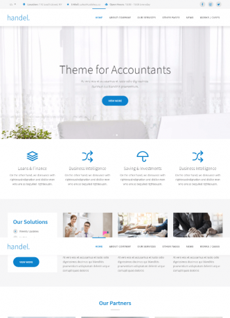 Professional Finance Website Theme